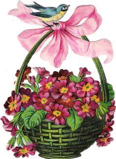 Oblaten Glanzbild scrap die cut chromo Blumen Korb basket Vogel bird oiseau: