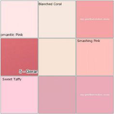 Pink paint: Designers' favorite colors  1. Benjamin Moore: Romantic Pink, 2. Benjamin Moore: Blanched Coral, 3. Behr Paint: Candy Coated, 4. Portola Paints: Geranium, 5. Farrow & Ball: Pink Ground, 6. Benjamin Moore: Smashing Pink, 7. Benjamin Moore: Sweet Taffy, 8. Sherwin-Williams: In the Pink, 9. Glidden Paint: Checkerberry  Created with fd's Flickr Toys.
