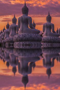 awakenedvibrations: lotusunfurled: by Anek Suwannaphoom ๑The Realm of Awakened Vibrations ๑