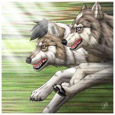 Wolf Run - Mikaboshi - by SheltieWolf on DeviantArt