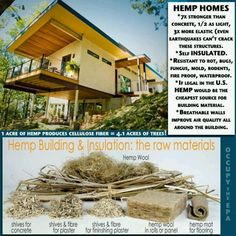 Hemp House, a way of 'Green eco-houses'