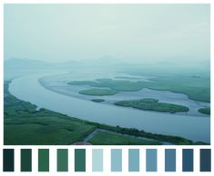 Pantone Perfection: The Color Palettes of Nature