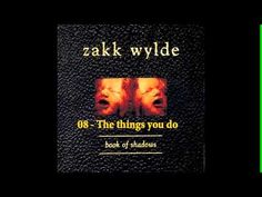 Zakk Wylde - Book of Shadows [Full Album] (+playlist)