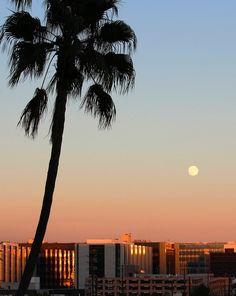 Good morning, L.A.! #FSJet blogger @Rachelle Lucas' trip begins with a sweet sunrise.