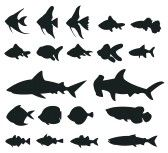 Silhouette : Sets of silhouette Fishes 1, create by vector