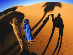 Picture of shadows cast by a tourist camel trek in the sand dunes of Erg Chebbi area of the Sahara desert