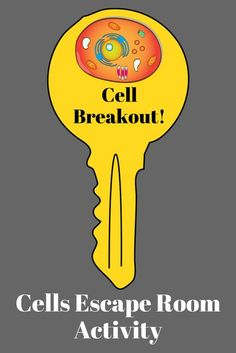 Cells Breakout, Unlock the Box, Escape Room. This breakout challenge will require your students to use their understanding of the cell theory, functions of cell parts and differences between plant and animal cells to unlock the box before time expires. Students love this activity that requires them to use their content knowledge along with critical thinking skills to successfully break out! Science Cells, Science Biology, Science Education, Life Science, Biology Classroom, Biology Teacher, Teaching Biology, High School Biology, Middle School Science