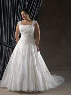 1105 - The fabric in this style is Princess Organza Sheer lace covered straps accentuate the shoulders. Beaded lace covers the bodice with a shirred band accentuated the empire waist. Lace continues to fall down onto the full A-line skirt and semi-cathedral train.