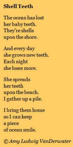 Poetry and lessons for children of all ages by Amy Ludwig VanDerwater for classrooms or homeschools to teach literacy and writing workshop instruction Ocean Quotes, Beach Quotes, Ocean Poem, Life Quotes Love, Me Quotes, Crush Quotes, Funny Quotes, I Love The Beach, My Love