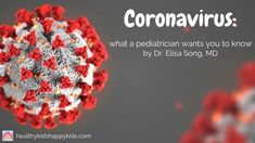 Flu hysteria has now transformed into coronavirus hysteria, and many of you have asked me how worried you should really be. News around has taken the world by storm and many of us are not sure whether to panic or stay calm. Addressing the Munich Security Natural Treatments, Natural Remedies, Health And Safety, Health And Wellness, Influenza Virus, Health Resources, Health Articles, Naturopathy, Flu Season