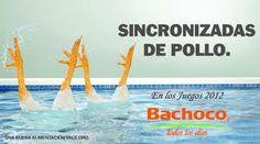PUBLICIDAD BACHOCO!!