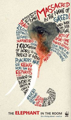 massacred in the name of greed - the elephant in the room - please stop financing animal cruelty