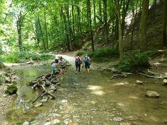 Hűsítő kirándulások gyerekekkel, ahol patakokban is mászkálhattok Hungary, Marvel, Mountains, Places, Nature, Travelling, Household, Events, Ideas