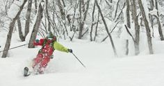 Freeride World Tour feiert Premiere in Asien Die FWT Management S.A. ist stolz, den ersten internationalen Freeride-Wettbewerb in Asien ankündigen zu dürfen. Am 13. Januar 2017 findet in Hakuba in der Präfektur Nagano der erste Freeride World Qualifier (FWQ )Japans statt. Diese Region der Japanischen Alpen ist für ihr spektakuläres Gelände, den großen Schneereichtum und optimale Bedingungen auch schon zu Saisonbeginn bekannt. http://www.soq.de/21339-2/