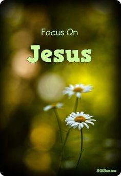 Focus On JESUS!!!!! Lord please help me to keep my focus on You. mwordsandthechristianwoman.com