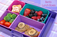 Bento Lunch Box via @Caryn Bailey