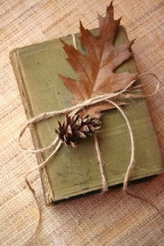 simple book, leaf, pine cone for fall decorating