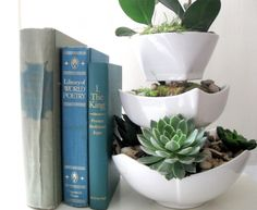 Ranging from $20-$100 you can get a high quality West Elm ceramic planter for your favorite indoor plants to live. For under $10 you can design a personalized planter to brighten your home with a few ceramic bowls, epoxy, soil, embellishments, and your choice of plants!