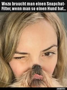 Snapchat Filter, Pet Dogs, Animales, Pictures