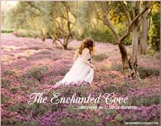 The Enchanted Cove