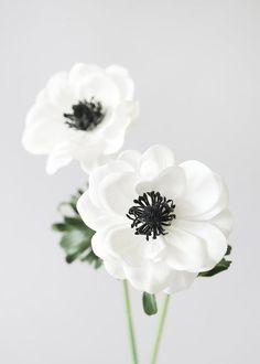 White Anemone Flower, Anemone Bouquet, Cream Flowers, Fake Flowers, Amazing Flowers, Artificial Flowers, Silk Flowers, Winter Flowers, Elegant Flowers