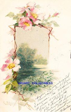 C Klein Postcard
