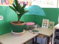 J'ai installé cette semaine un nouveau petit coin dans la classe: c'est le coin nature! Les enfants commencent à apporter leur trésor! et cette semaine c'est thibaut qui m'apporte des escargots dans une boite avec des carottes.... beaucoup de questions,...