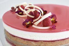 Rabarber Cheesecake – Tine's Verden