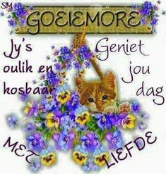 Goeie More, Good Morning Wishes, Christmas Ornaments, Holiday Decor, Cards, Afrikaans Quotes, Luhan, Daily Inspiration, Qoutes