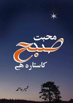 Umera Ahmad is the author of the book Mohabbat Subha Ka Sitara Hai Novel. It is a great social, romantic story which dramatised for Hum TV channel also. Romantic Novels To Read, Best Romance Novels, Literature Books, History Books, Famous Novels, Great Novels, Urdu Novels, Ebook Pdf, Free Books