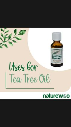 Tea Tree Therapy, Aromatherapy Products, Natural Cleaning Products, Tea Tree Oil, Natural Skin Care, Essential Oils, Herbs, Tee Tree Oil, Herb