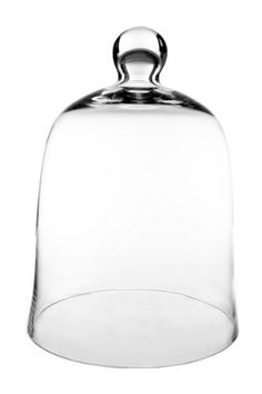 """CYS Glass Cloche Bell Jar Dome with Knob. H-12"""", Cloche Opening - 8.5"""", Plant Terrarium Cover. Pack of 1 pc"""