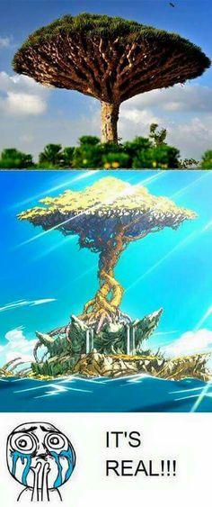 L'île de Tendro c'est réel... J'exige de savoir où c'est. C'est où???????? - Fairy Tail - Otaku