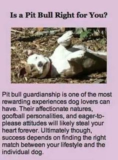 Any large dog needs an owner with knowledge about controlling their dog.  Train yourself and your dog.  Any dog large or small should be on a leash in public.  Any child needs to be watched around any animal, kids need to be trained to nice to animals too.  Love me some pitbulls!!!