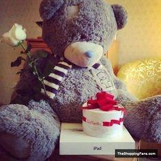 cute teddy bear pictures - بحث Google
