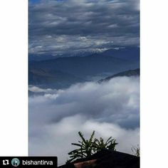 #Repost @bishantirva with @repostapp Get featured by tagging your post with #Talestreet Life in the hills. Here in Kalimpong we live with the clouds. #life #hills #clouds #kalimpong #india #photography #canon #soi #talestreet #twitter
