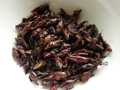 Chapulines... because you can't just eat *one*. Fried grasshoppers (Oaxacan / Mexican. I have actually consumed these and they are not that bad. If you can get past the legs.