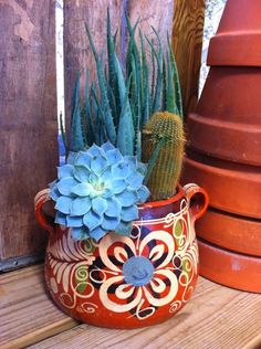 A cactus is a superb means to bring in a all-natural element to your house and workplace. The flowers of several succulents and cactus are clearly, their crowning glory. Cactus can be cute decor ideas for your room. Cacti And Succulents, Planting Succulents, Planting Flowers, Mexican Garden, Mexican Art, Mexican Style Decor, Cactus Plante, Cactus Decor, Cactus Cactus
