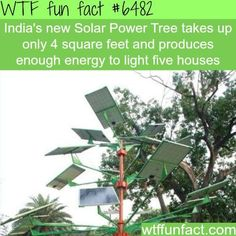 Energy Efficient Home Upgrades in Los Angeles For $0 Down -- Home Improvement Hub -- Via - Solar Power Tree - WTF fun facts   Follow @gwylio0148 or visit http://gwyl.io/ for more diy/kids/pets videos