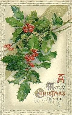 Antique Merry Christmas card with holly