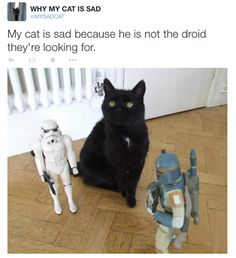 He's not the droid they're looking for.