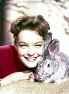 Jeune fille, on l'a fait poser telle une ingénue avec un petit lapin, à mille lieux de ce qu'elle etait en réalité ... #romy #romyschneider #romyforever #Rip #icone #legende #muse #actrice #cinema #cinemafrancais #lesjeunesanneesderomy #photographie