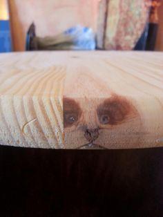 Panda in a cut of wood