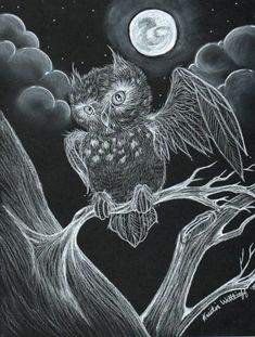 Native Americans associated the meaning of owl with wisdom, foresight, and keeper of sacred knowledge. Here we have collected clever owl drawings for your inspiration. Graphite Drawings, Pencil Drawings, Art Drawings, Owl Pictures, Pictures To Draw, Owl Sketch, Great Horned Owl, Creatures Of The Night, Owl Art