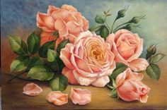 Rosas - Douglas Frasquetti