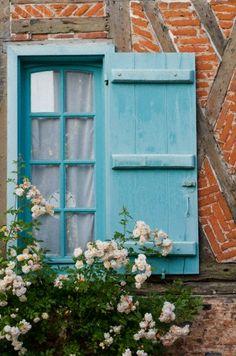 Roses on Blue Shutters, France