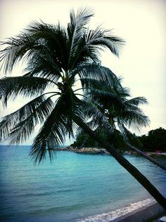 Samui Paradise Chaweng Beach Resort and Spa in Bo Phut, Surat Thani