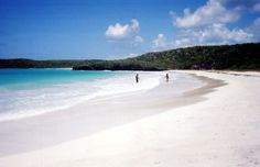 "Vieques, Puerto Rico - Wikipedia, the free encyclopedia ""Little Girl Island"" - Secluded beaches, bioluminescent water"