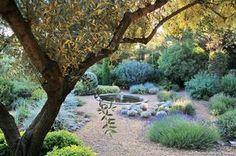 Un jardin en terrasses sur le Méditerranée