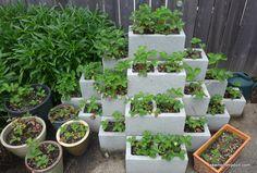cinder block herb planter - Google Search